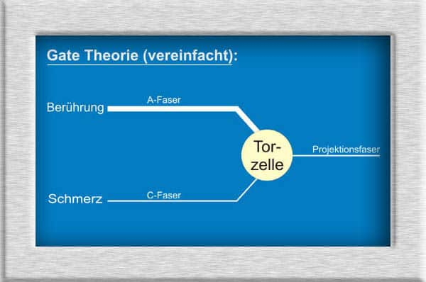 Gate Control Theorie